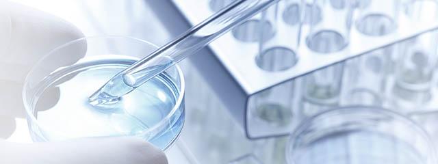 Antibody Humanization